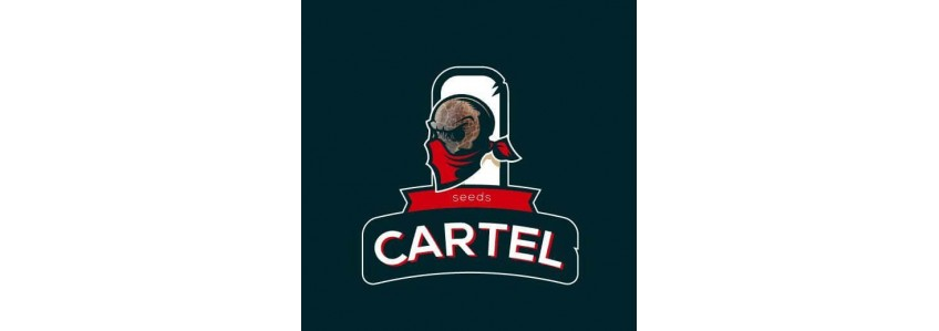 Cartel Seeds