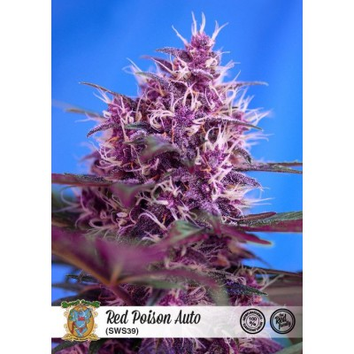 Red Poison Auto