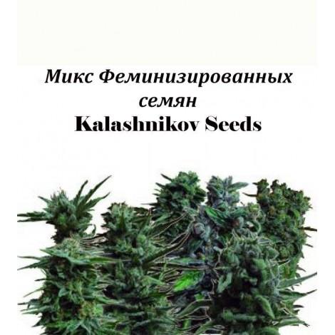 Микс Феминизированных семян