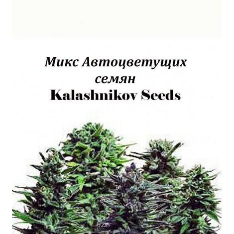 Микс Автоцветущих семян