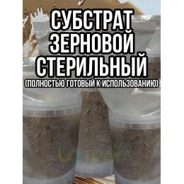 Субстрат зерновой, стерильный (готовый к использованию)