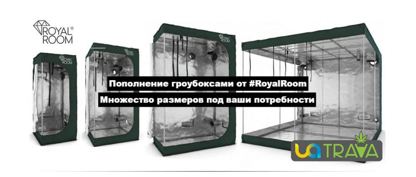 Пополнение гроубоксами от RoyalRoom