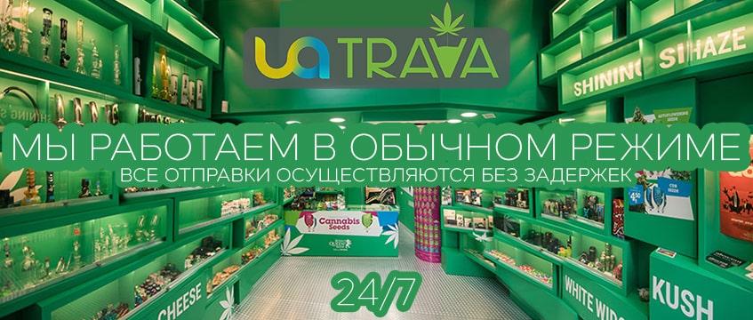 UATRAVA Работает в стандартном режиме, без локдауна