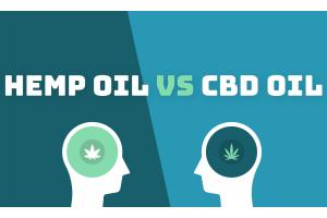 В чем разница между маслом CBD и конопляным маслом?